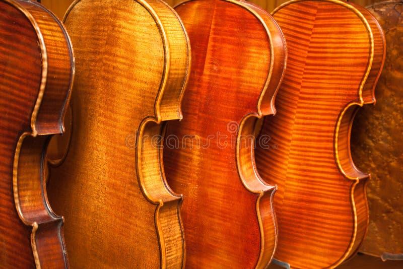 Violinos imagens de stock