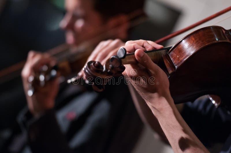 Violinos no concerto fotografia de stock