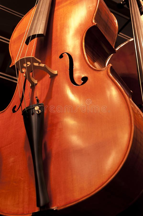 Violins on the wall. Row of sparkling new violins, stringed musical instruments on sale stock photos