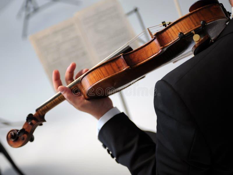 violinst 免版税图库摄影