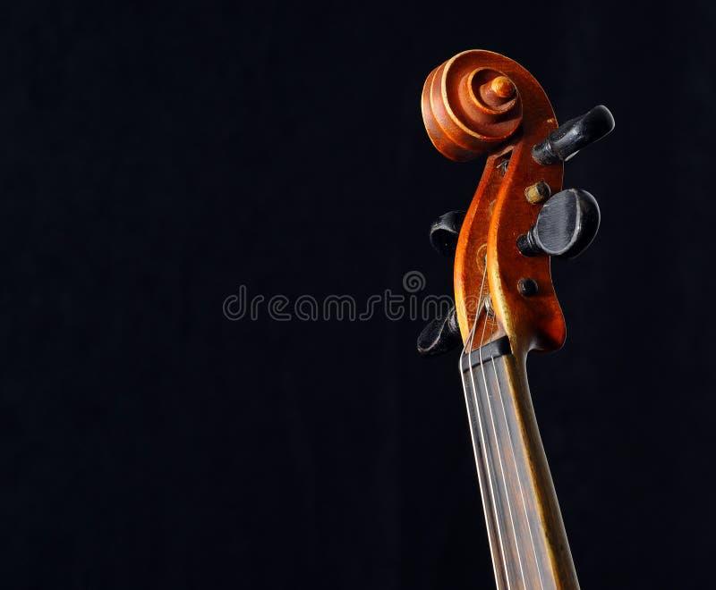 Violon image stock