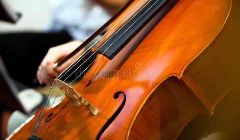 Violoncel royalty-vrije stock afbeelding