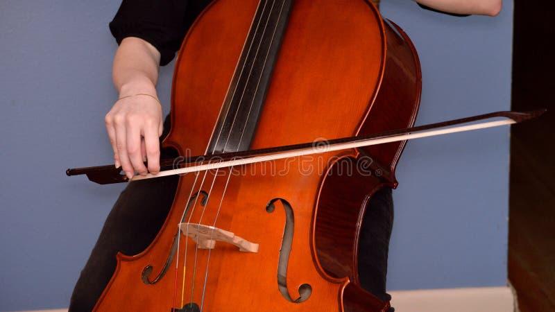 Violoncelista que toca el violoncelo imagen de archivo