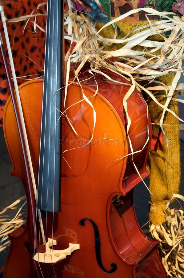 Violoncelle avec un regard d'action de grâces d'automne photographie stock libre de droits