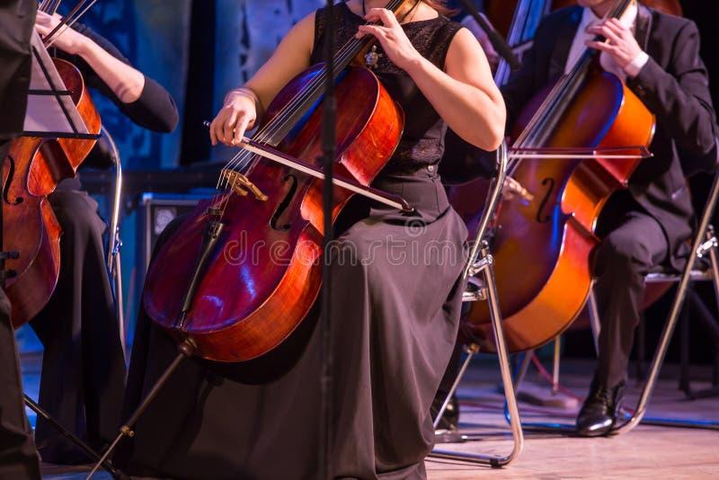 Violoncellmusiker i orkester royaltyfria bilder