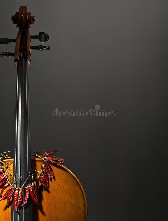 Violoncello, wiolonczela z gorącą pepperoni kolią obraz stock