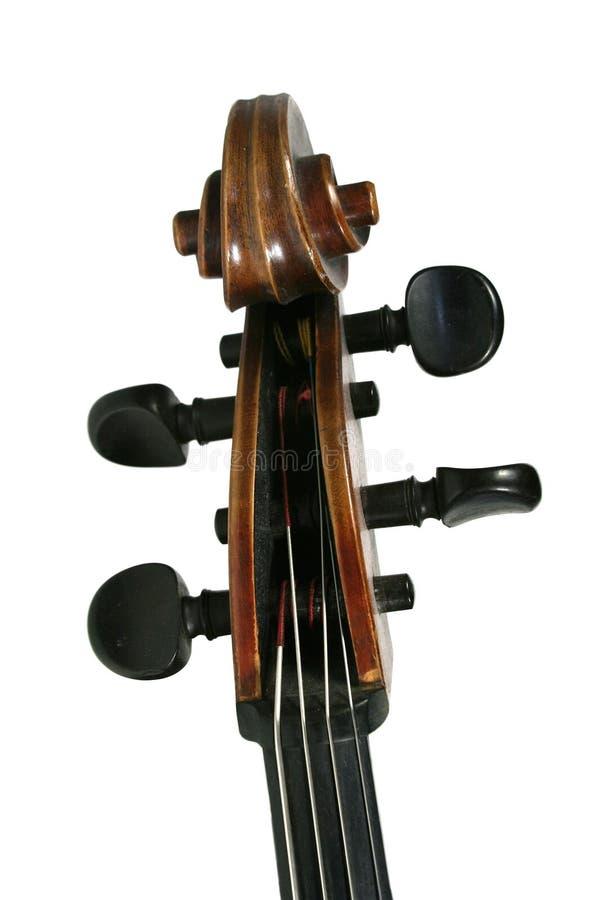 violoncellscroll arkivbild