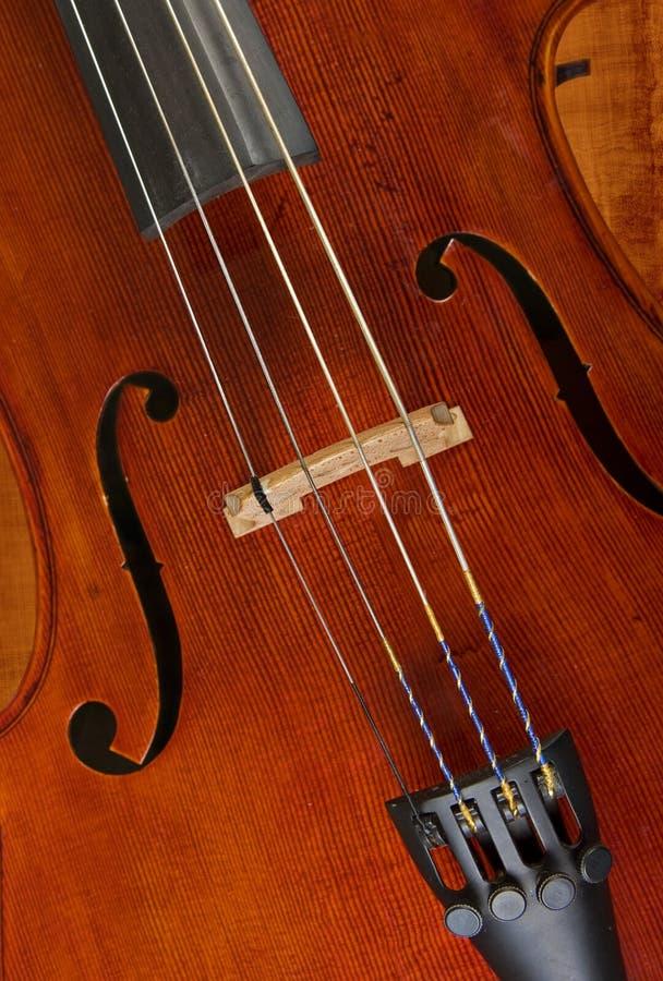 Violoncelo o violín foto de archivo libre de regalías