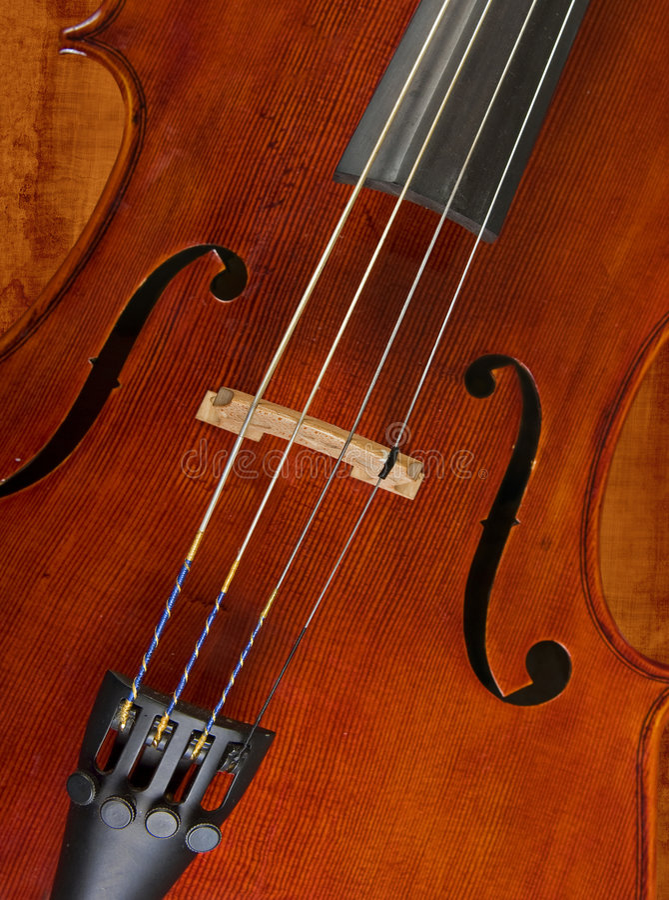Violoncelo ou violino imagem de stock