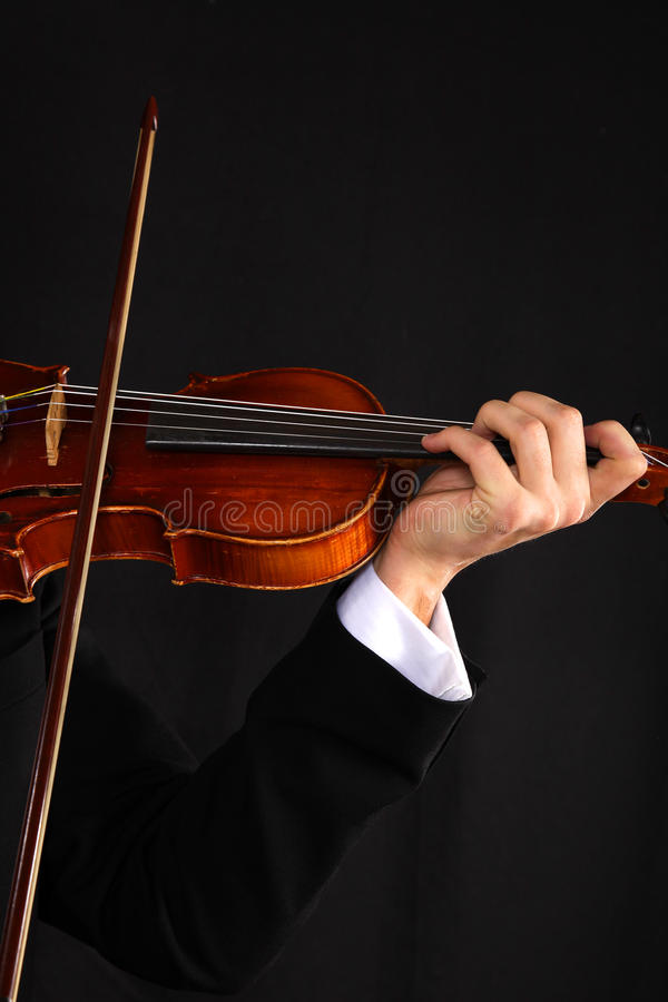 Violonist stockbilder