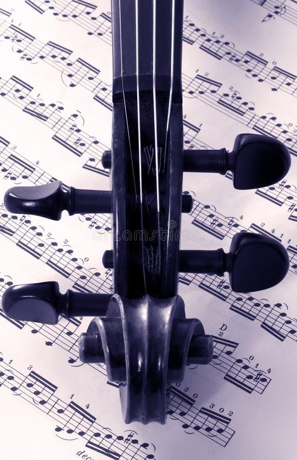 Viool en muziek stock foto