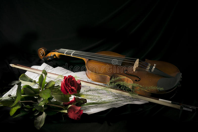 Vioolstudie royalty-vrije stock fotografie