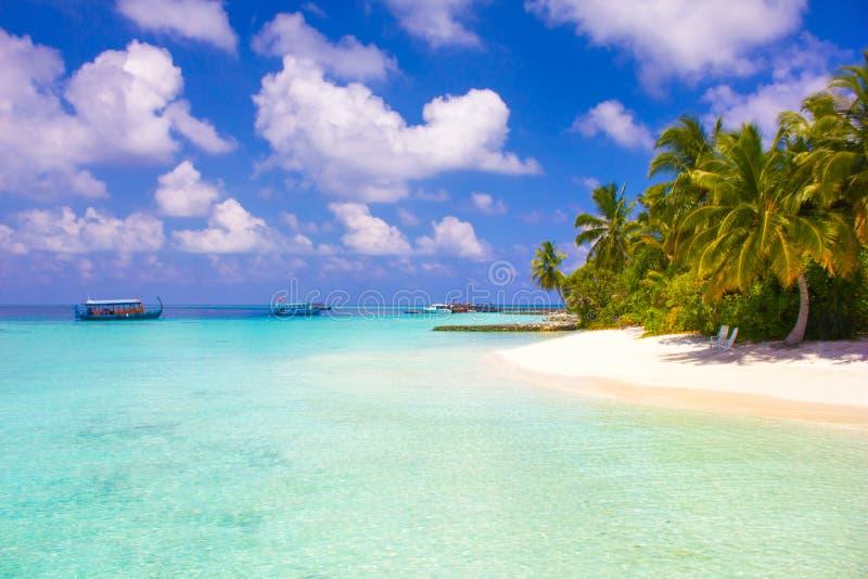 VIP miesiąca miodowego kurort w Maldives, Eden na ziemi fotografia stock