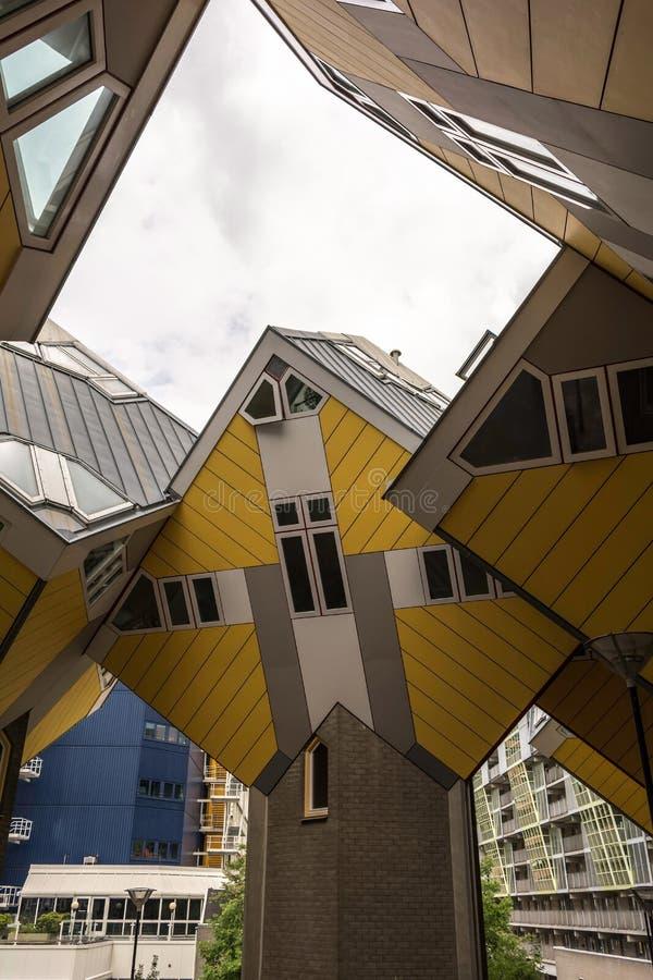 Vippade på kubhus som vilar på sexhörning-formade pyloner i Rotterdam royaltyfri fotografi