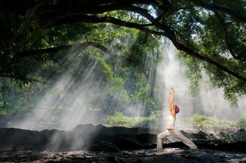 Virabhadrasana, ioga do hatha fotos de stock