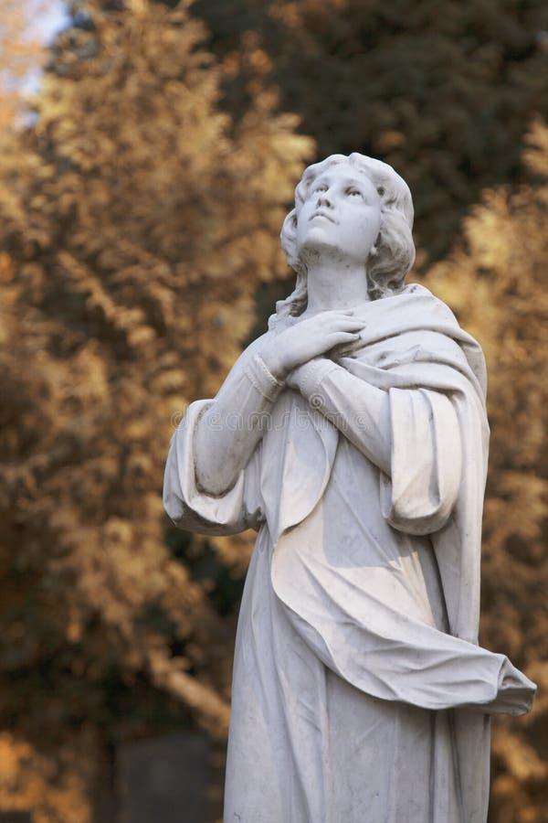 virgin статуи mary стоковое фото rf