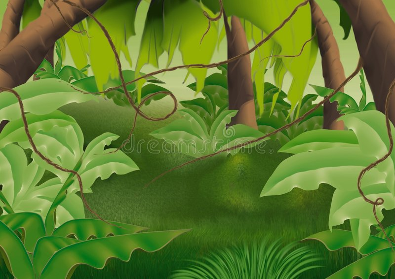 Virgin forest stock illustration