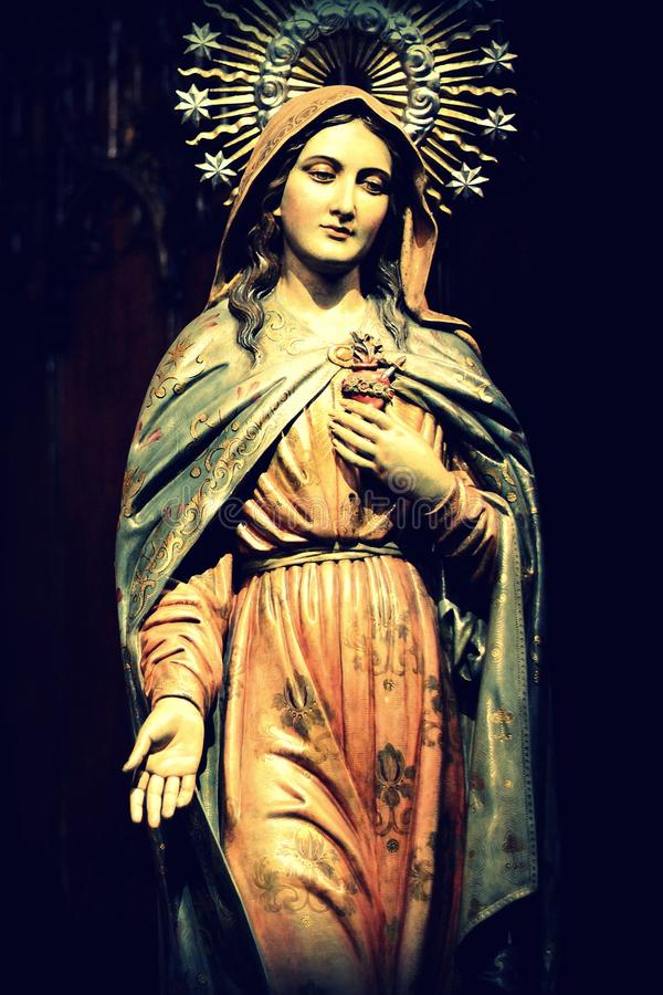 Download Virgin Mary Stock Image - Image: 24458451