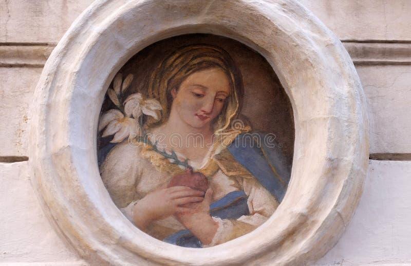 Virgin Mary imagem de stock royalty free