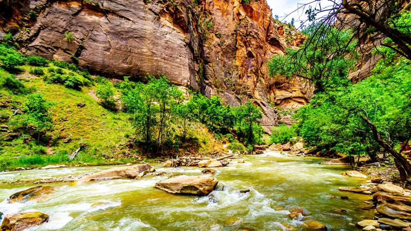The Virgin River as it carved its way through the Sandstone Mountains of Zion National Park, UT, USA. The North Fork of the Virgin River as it flows through stock photography