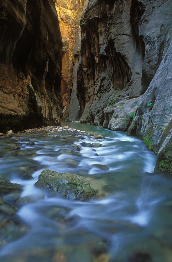 Virgin River Narrows royalty free stock photos