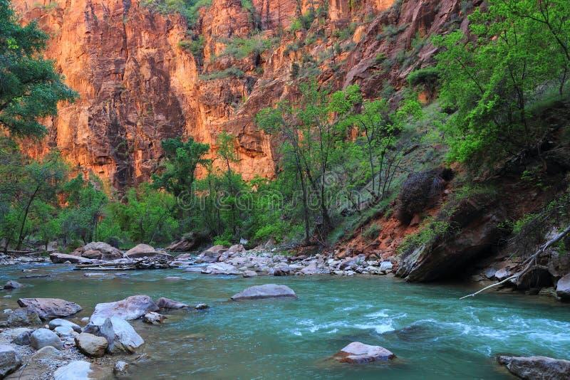 Virgin River and Sheer Canyon Walls at the Narrows, Zion National Park, Utah stock photography