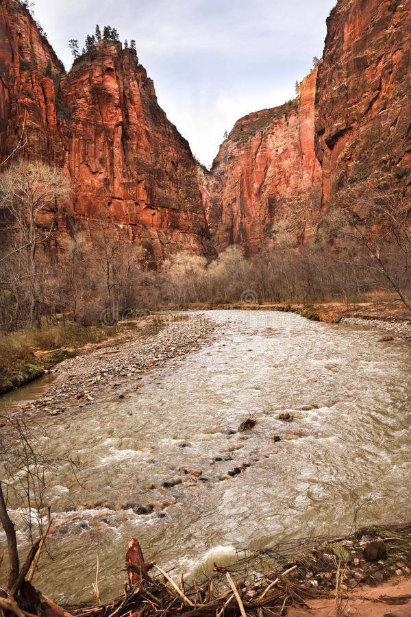 Download Virgin River Zion Canyon National Park Utah Stock Photo - Image: 18677150