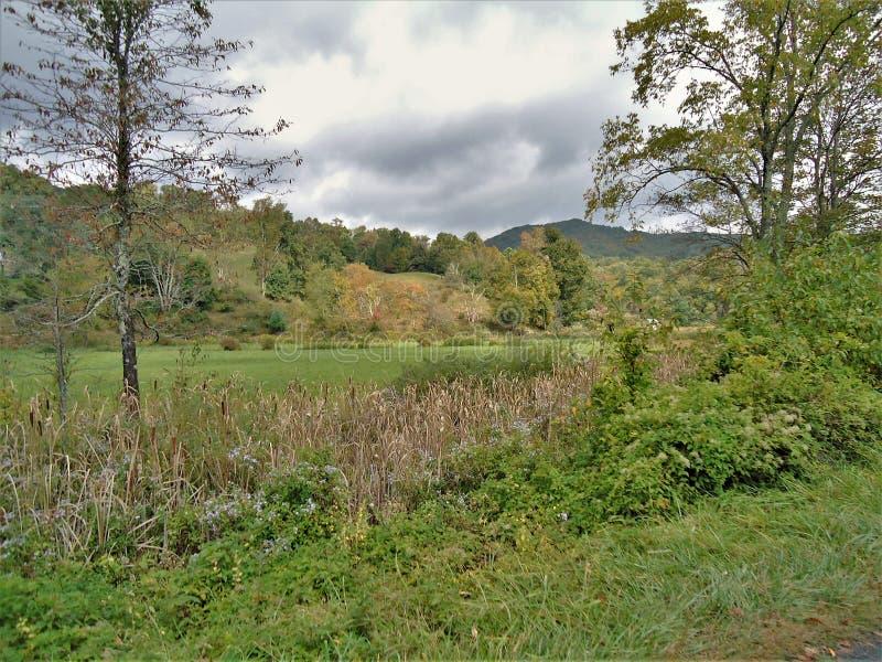 Virginia Creeper Trail Landscape photo libre de droits