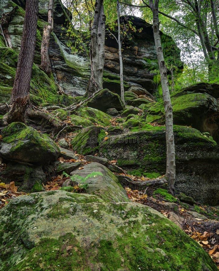 Virginia Kendall Ledges Cuyahoga Valley National-Park royalty-vrije stock foto