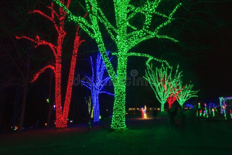 Virginia wakacje festiwal świateł obrazy royalty free