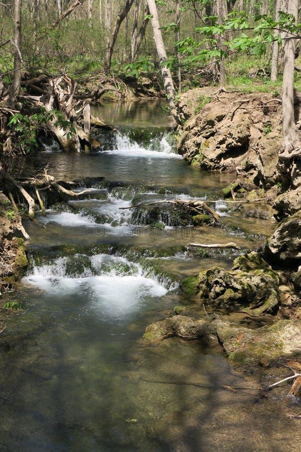 Virginia Waterfall in primavera fotografia stock