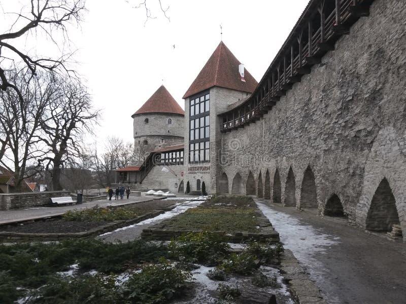 Virginstoren in de stadsmuur, Tallinn stock foto's