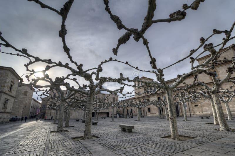 Viriato广场。 萨莫拉 库存图片
