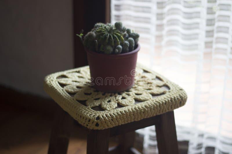 Virka garnering över en träbänk med en kaktus överst arkivfoto