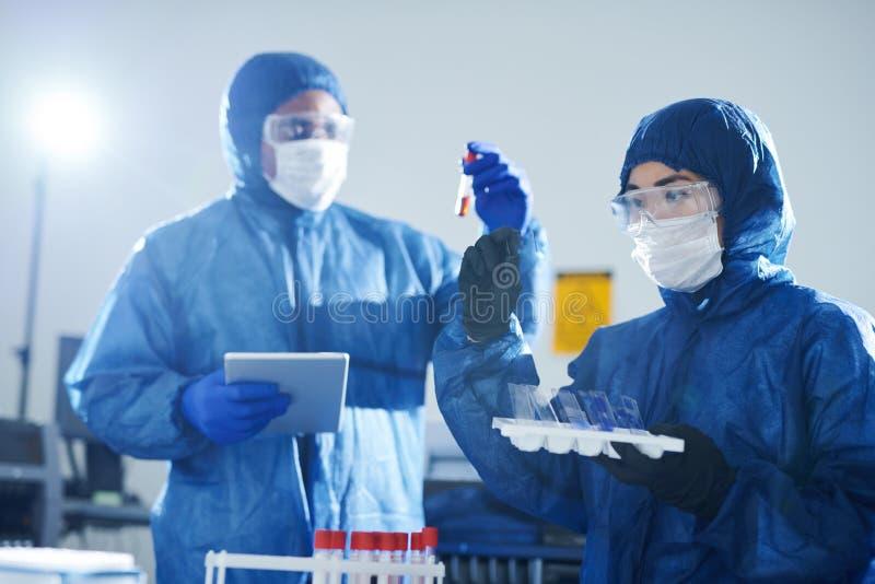 Virologists делая анализы крови стоковое изображение