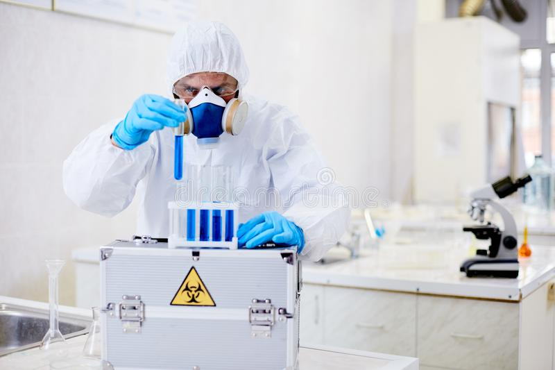 Virology Research Scientist Focused on Work royalty free stock photography