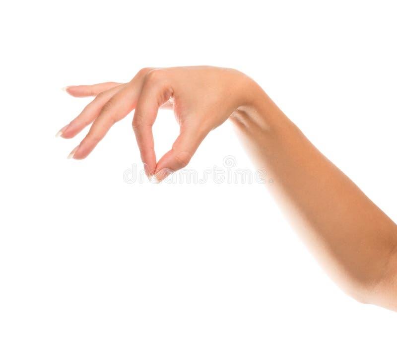 Virtuelle Visitenkarte des Frauenhandgriff-Zeichens lizenzfreies stockfoto
