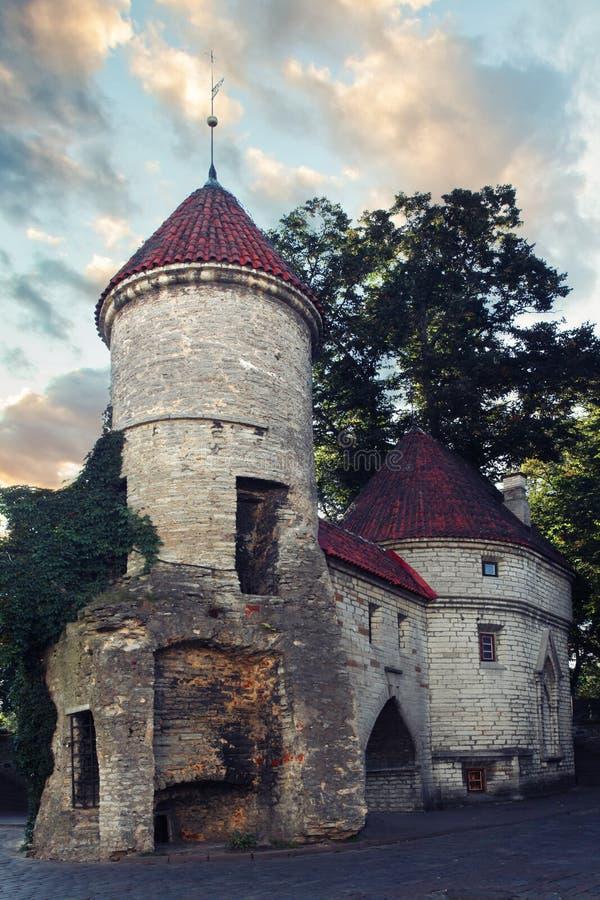 Viru门,塔林,爱沙尼亚 旅游城市塔林老镇  免版税图库摄影