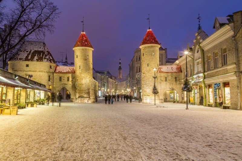Viru port och Tallinn stadshus royaltyfri foto