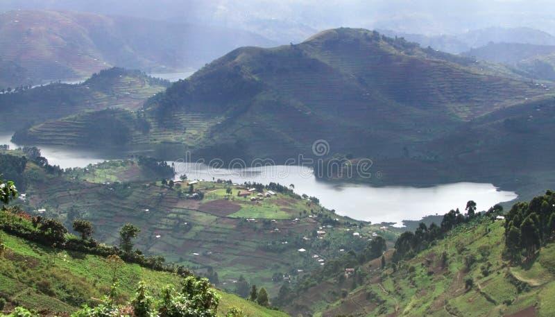 Virunga Mountains in Uganda royalty free stock photography