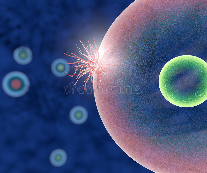 Virus attacks healthy cells stock illustration