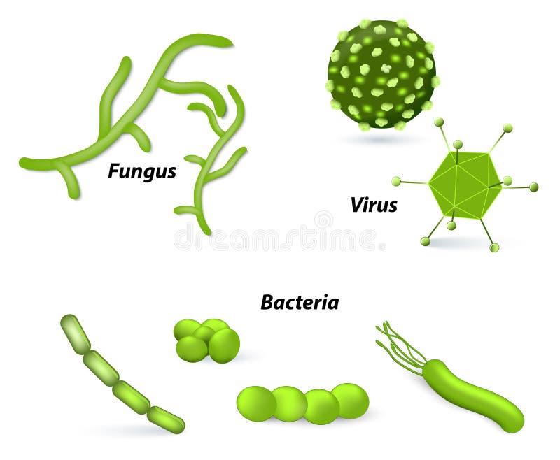 Virus, bacteriën en paddestoelen stock illustratie