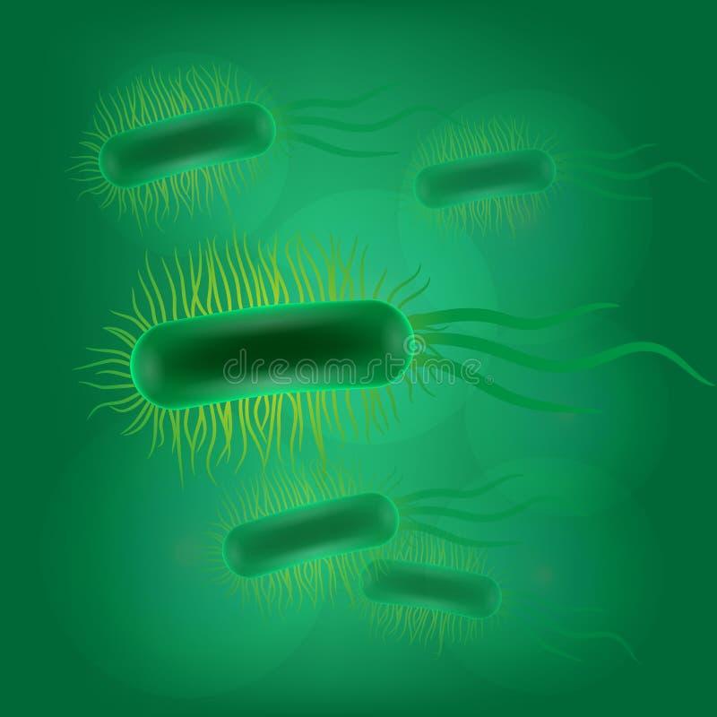 Virus d'Escherichia coli illustration libre de droits
