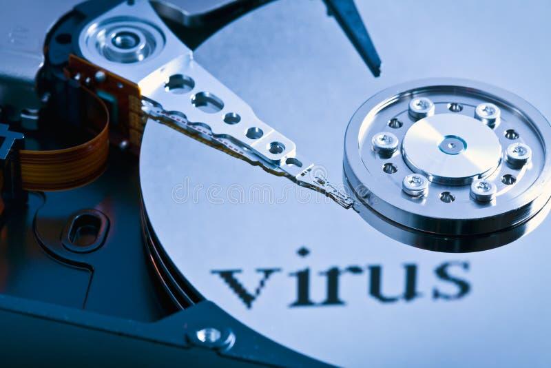 Virus de disque dur photographie stock libre de droits