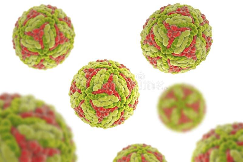 Virus de l'encéphalite japonaise illustration libre de droits