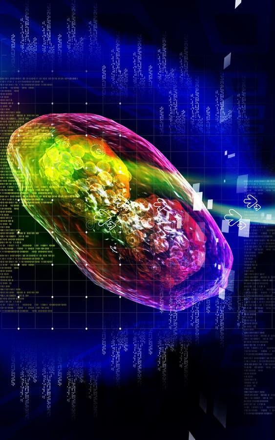 Virus De Sífilis Imágenes de archivo libres de regalías