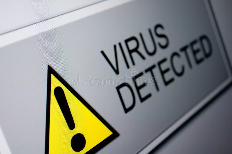 Virus detectado fotos de archivo libres de regalías
