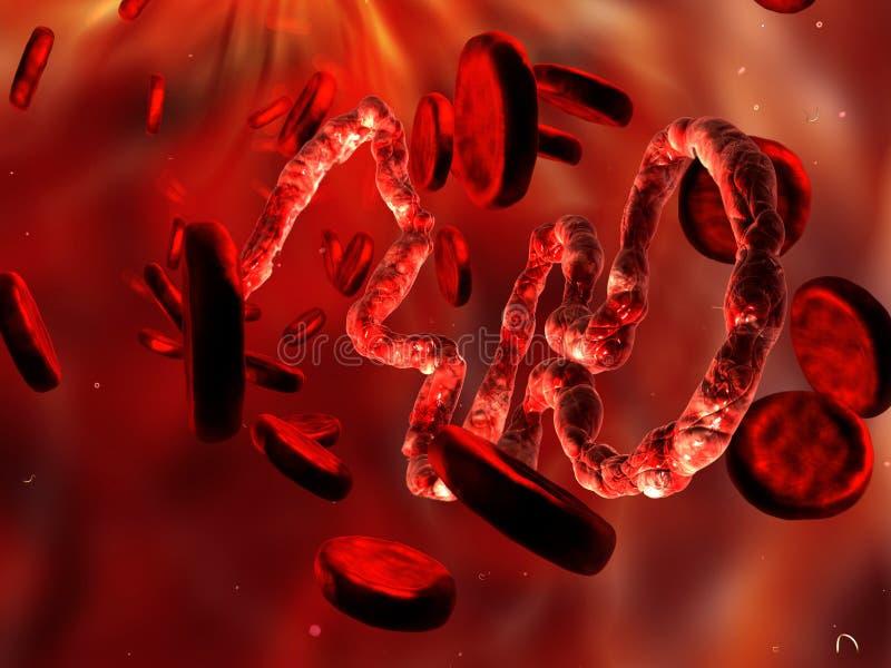 Virus di Ebola, vista microscopica illustrazione vettoriale