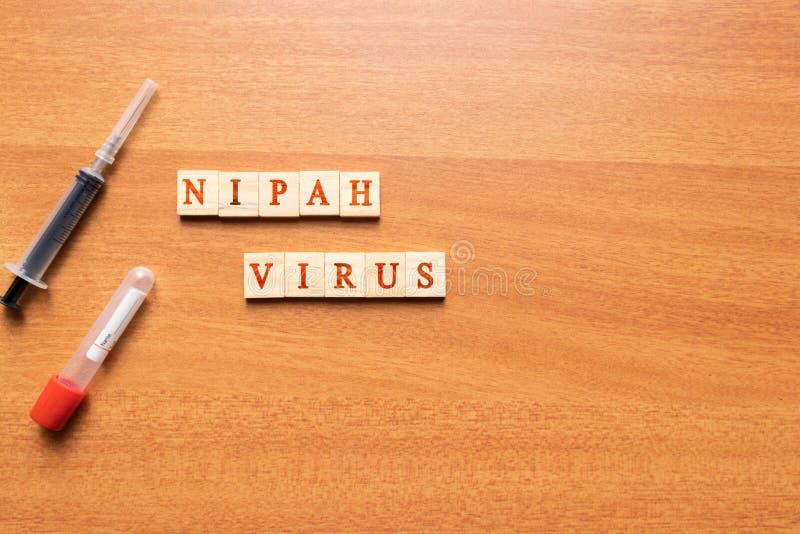 Virus di Nipah su fondo strutturato di legno con la siringa ed il tubo della raccolta del sangue del vacutainer fotografia stock libera da diritti