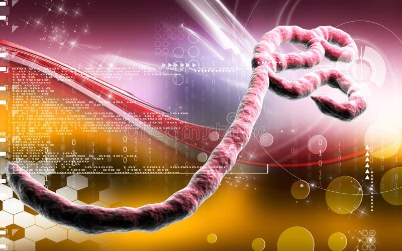 Virus Ebola illustration stock